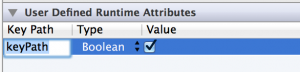 User-Defined Runtime Attributes